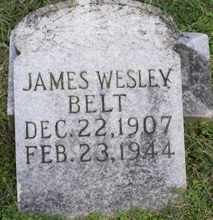 BELT, JAMES WESLEY - Sumner County, Tennessee   JAMES WESLEY BELT - Tennessee Gravestone Photos