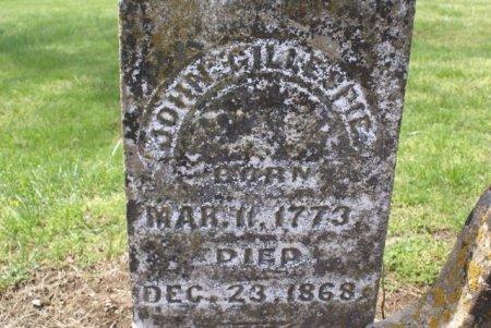 GILLESPIE, JOHN - Sumner County, Tennessee   JOHN GILLESPIE - Tennessee Gravestone Photos