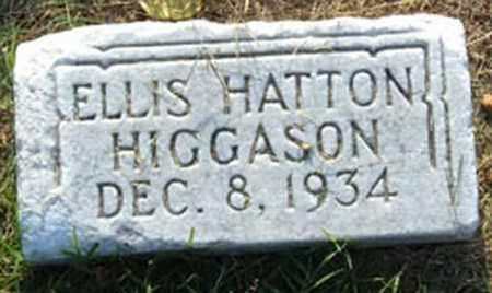 HIGGASON, ELLIS HATTON - Sumner County, Tennessee   ELLIS HATTON HIGGASON - Tennessee Gravestone Photos