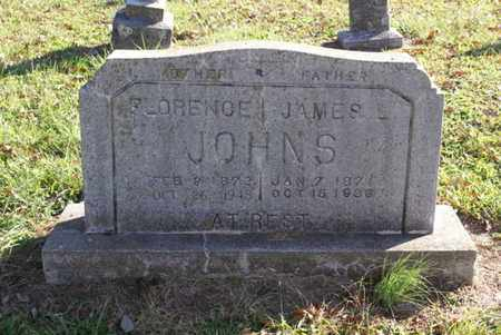 JOHNS, FLORENCE - Sumner County, Tennessee | FLORENCE JOHNS - Tennessee Gravestone Photos