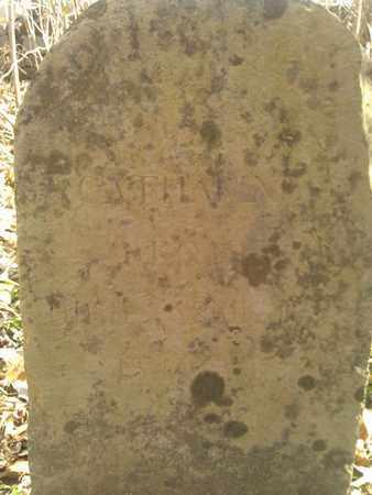 RONEY, CATHERINE - Sumner County, Tennessee | CATHERINE RONEY - Tennessee Gravestone Photos
