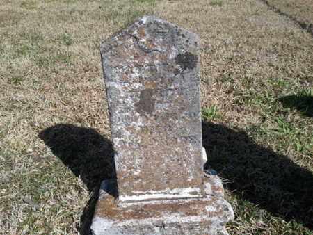 SEARCY, MATTIE F - Sumner County, Tennessee   MATTIE F SEARCY - Tennessee Gravestone Photos