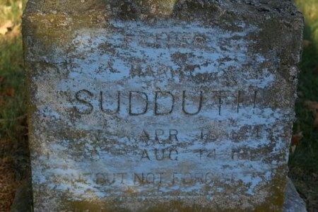 SUDDARTH, HARDY - Sumner County, Tennessee | HARDY SUDDARTH - Tennessee Gravestone Photos
