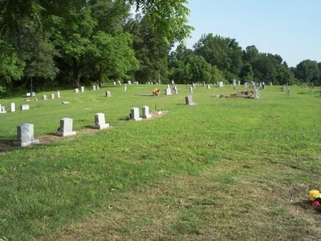 *COTTON CEMETERY OVERVIEW,  - Tipton County, Tennessee |  *COTTON CEMETERY OVERVIEW - Tennessee Gravestone Photos