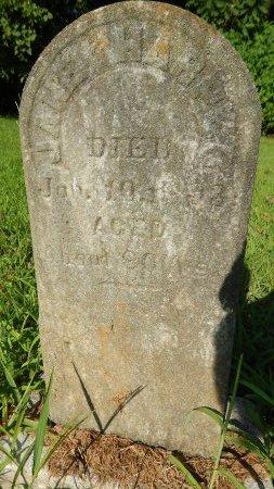 HARPER, JANE - Tipton County, Tennessee | JANE HARPER - Tennessee Gravestone Photos