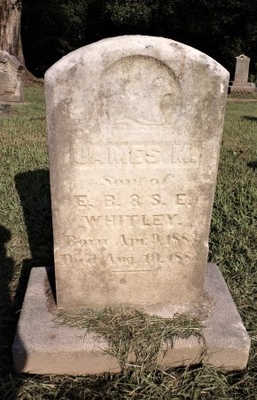 WHITLEY, JAMES M - Tipton County, Tennessee | JAMES M WHITLEY - Tennessee Gravestone Photos