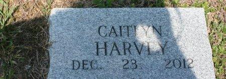 HARVEY, CAITLYN - Van Buren County, Tennessee | CAITLYN HARVEY - Tennessee Gravestone Photos