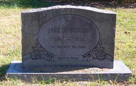 ANDERSON, JAKE - Warren County, Tennessee | JAKE ANDERSON - Tennessee Gravestone Photos
