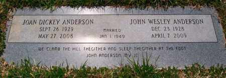 ANDERSON, JOAN - Warren County, Tennessee   JOAN ANDERSON - Tennessee Gravestone Photos