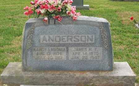 ANDERSON, JAMES H. T. - Warren County, Tennessee | JAMES H. T. ANDERSON - Tennessee Gravestone Photos