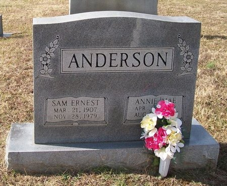 ANDERSON, SAM ERNEST - Warren County, Tennessee | SAM ERNEST ANDERSON - Tennessee Gravestone Photos