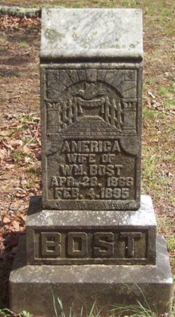 BOST, AMERICA - Warren County, Tennessee | AMERICA BOST - Tennessee Gravestone Photos