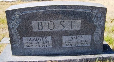 BOST, AMOS - Warren County, Tennessee | AMOS BOST - Tennessee Gravestone Photos