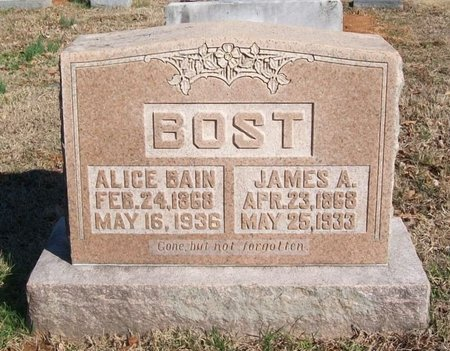 BOST, JAMES A. - Warren County, Tennessee | JAMES A. BOST - Tennessee Gravestone Photos