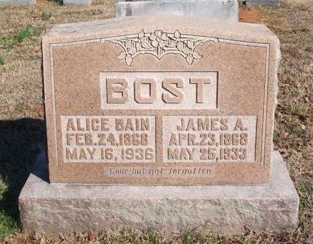 BOST, ALICE - Warren County, Tennessee | ALICE BOST - Tennessee Gravestone Photos