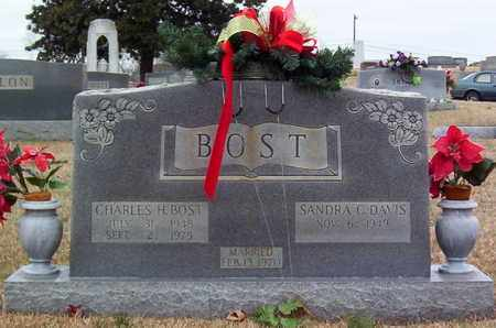 BOST, CHARLES H. - Warren County, Tennessee | CHARLES H. BOST - Tennessee Gravestone Photos