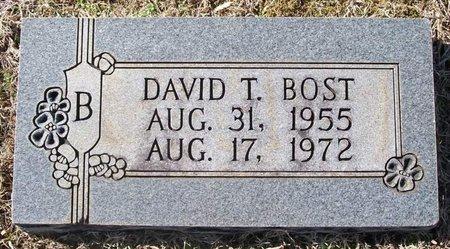 BOST, DAVID T. - Warren County, Tennessee   DAVID T. BOST - Tennessee Gravestone Photos