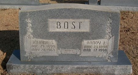 BOST, RANDY J. - Warren County, Tennessee | RANDY J. BOST - Tennessee Gravestone Photos