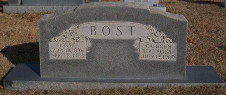 BOST, JOSSIE - Warren County, Tennessee | JOSSIE BOST - Tennessee Gravestone Photos