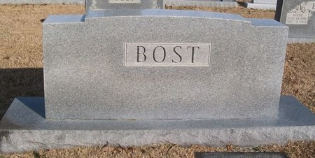 BOST, LUTHER - Warren County, Tennessee | LUTHER BOST - Tennessee Gravestone Photos