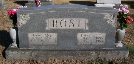BOST, HARVY LEE - Warren County, Tennessee | HARVY LEE BOST - Tennessee Gravestone Photos