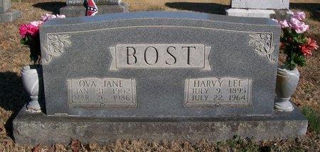 BOST, OVA JANE - Warren County, Tennessee | OVA JANE BOST - Tennessee Gravestone Photos
