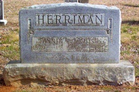 HERRIMAN, FANNIE - Warren County, Tennessee | FANNIE HERRIMAN - Tennessee Gravestone Photos