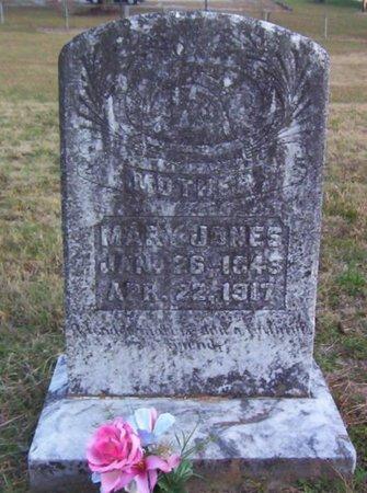 JONES, MARY - Warren County, Tennessee | MARY JONES - Tennessee Gravestone Photos