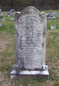 MEDLEY, HAZLE MARIE - Warren County, Tennessee | HAZLE MARIE MEDLEY - Tennessee Gravestone Photos