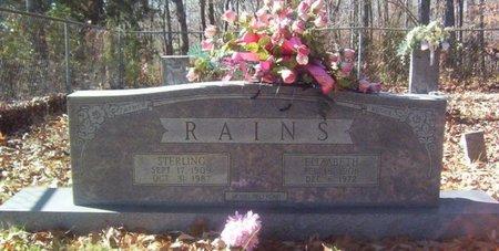 RAINS, ELIZABETH - Warren County, Tennessee | ELIZABETH RAINS - Tennessee Gravestone Photos