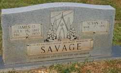 SAVAGE, SUSAN S. - Warren County, Tennessee | SUSAN S. SAVAGE - Tennessee Gravestone Photos