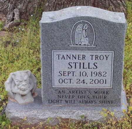 STILLS, TANNER TROY - Warren County, Tennessee | TANNER TROY STILLS - Tennessee Gravestone Photos
