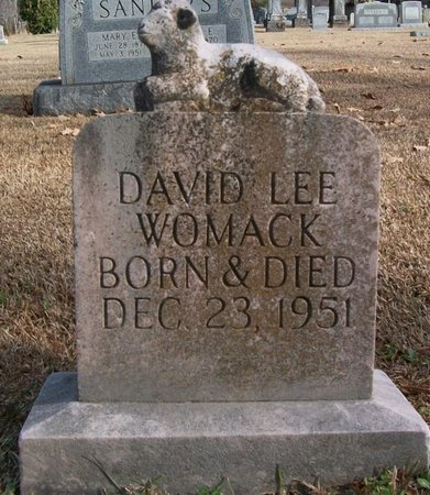 WOMACK, DAVID LEE - Warren County, Tennessee   DAVID LEE WOMACK - Tennessee Gravestone Photos