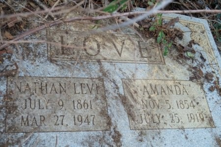LOVE, AMANDA - Washington County, Tennessee | AMANDA LOVE - Tennessee Gravestone Photos