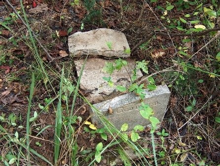 BARKLEY SR, WILLIAM IVERSON - Wayne County, Tennessee | WILLIAM IVERSON BARKLEY SR - Tennessee Gravestone Photos