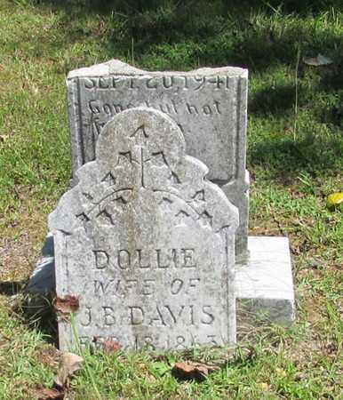 DAVIS, DOLLIE - Wayne County, Tennessee | DOLLIE DAVIS - Tennessee Gravestone Photos