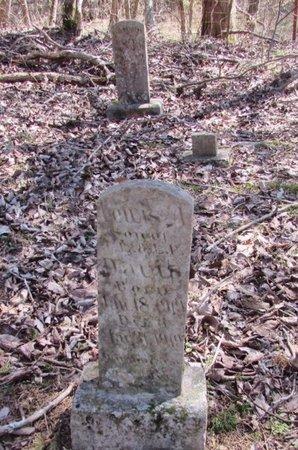 DAVIS, LEWIS - Wayne County, Tennessee | LEWIS DAVIS - Tennessee Gravestone Photos