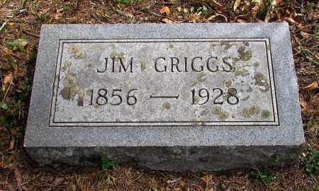 GRIGGS, JIM - Wayne County, Tennessee | JIM GRIGGS - Tennessee Gravestone Photos