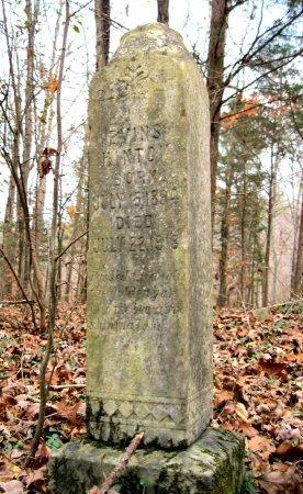 HINTON, EVINS - Wayne County, Tennessee   EVINS HINTON - Tennessee Gravestone Photos
