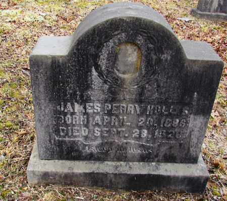 HOLLIS, JAMES PERRY - Wayne County, Tennessee | JAMES PERRY HOLLIS - Tennessee Gravestone Photos