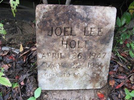 HOLT, JOEL LEE - Wayne County, Tennessee | JOEL LEE HOLT - Tennessee Gravestone Photos