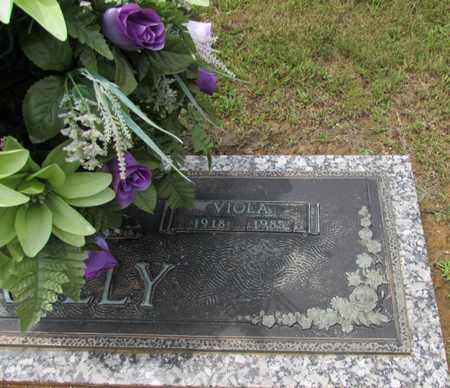 LAY, VIOLA - Wayne County, Tennessee | VIOLA LAY - Tennessee Gravestone Photos