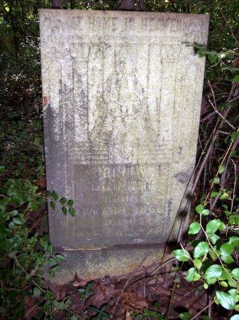 DINNING, JOHN W. - Weakley County, Tennessee | JOHN W. DINNING - Tennessee Gravestone Photos