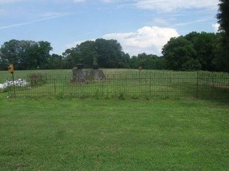 *OLDHAM OVERVIEW,  - Weakley County, Tennessee |  *OLDHAM OVERVIEW - Tennessee Gravestone Photos
