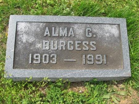 BURGESS, ALMA - Williamson County, Tennessee | ALMA BURGESS - Tennessee Gravestone Photos