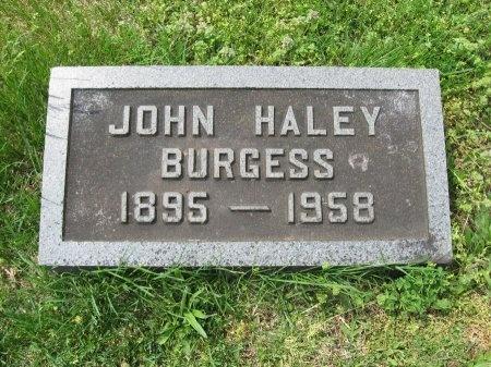BURGESS, JOHN HALEY - Williamson County, Tennessee | JOHN HALEY BURGESS - Tennessee Gravestone Photos