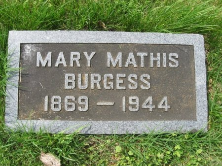 BURGESS, MARY ELLA - Williamson County, Tennessee | MARY ELLA BURGESS - Tennessee Gravestone Photos