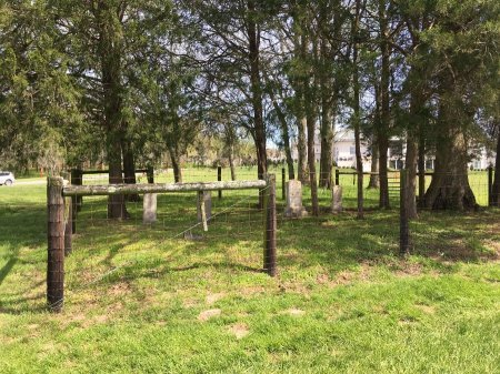 *BURGESS OVERVIEW,  - Williamson County, Tennessee |  *BURGESS OVERVIEW - Tennessee Gravestone Photos
