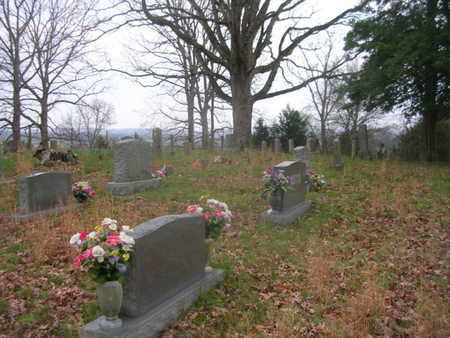 *COMSTOCK OVERVIEW,  - Williamson County, Tennessee |  *COMSTOCK OVERVIEW - Tennessee Gravestone Photos