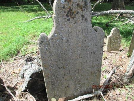 "GRIEVES DAVIS, FRANCIS ""FANNY"" - Williamson County, Tennessee   FRANCIS ""FANNY"" GRIEVES DAVIS - Tennessee Gravestone Photos"